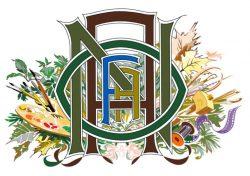 NOAFA Palette Logo