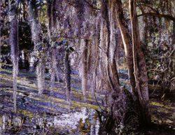Swamp Moss Adrian Deckbar