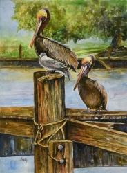 Lafitte Pelicans