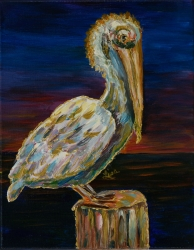Night Time Pelican